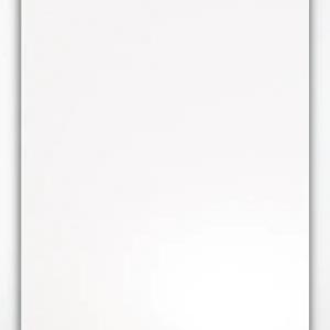 Caldaia A Condensazione Viessmann Vitodens 050 W 24 Kw Alesar